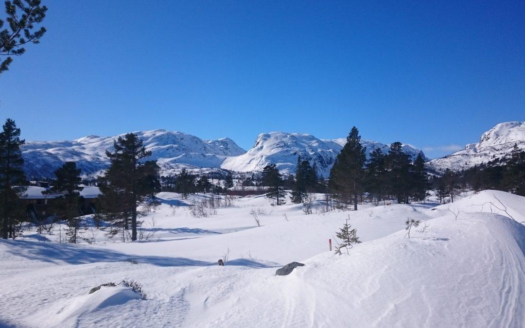 Utbygging av omkring 100 hytter og leiligheter på Hallbjønnsekken i Vest-Telemark